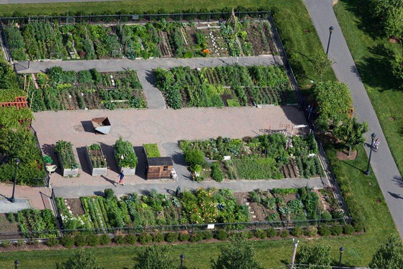 Urban Agriculture Comprehensive Farm Review Design Review For Urban